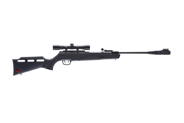 Ruger targis hunter .22 caliber pellet Air Gun Review