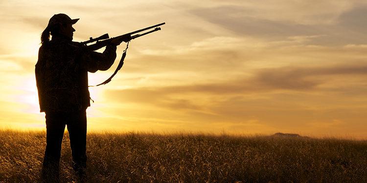 Beginner's Guide For Hunting