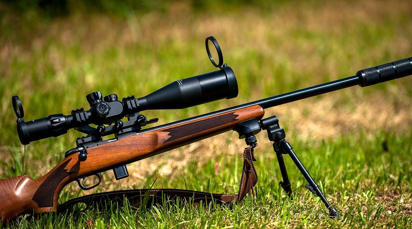 Best Scopes for 308 Rifles