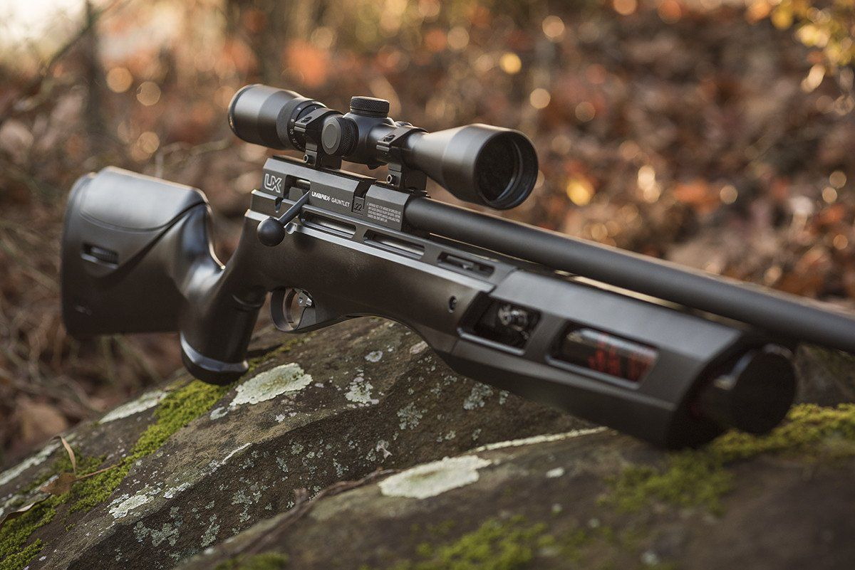 Top 10 Best Pcp Air Rifles 2020 Reviews And Buyers Guide