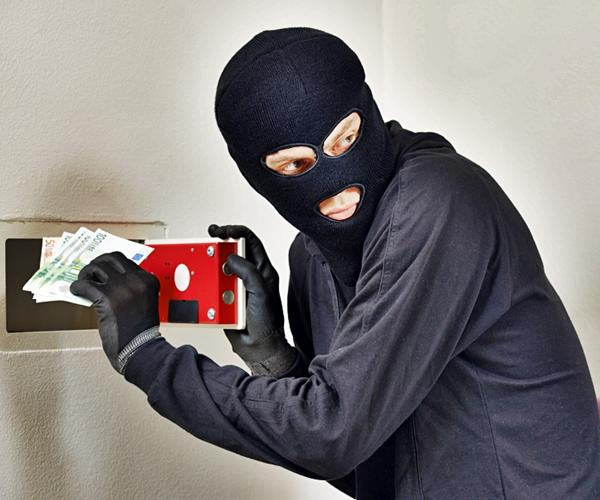 Protection from Burglars